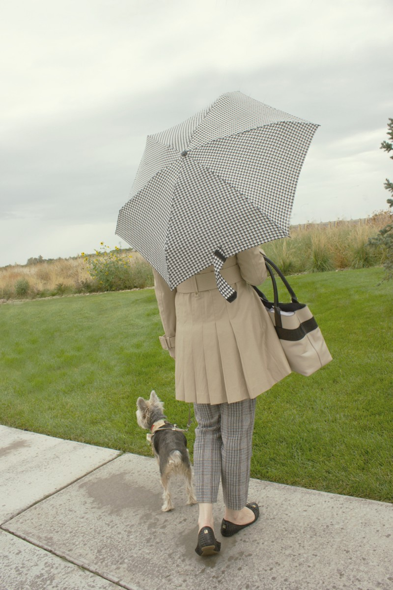 rain-1-1-1