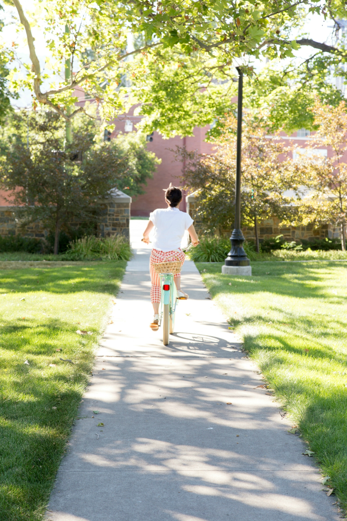 The Sugared Lemon summer cruiser bicycle