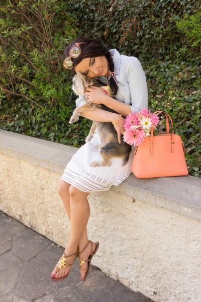 lil pup lucy hug