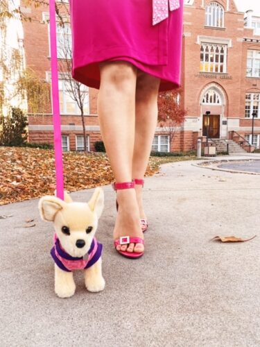Elle woods and bruiser woods costume